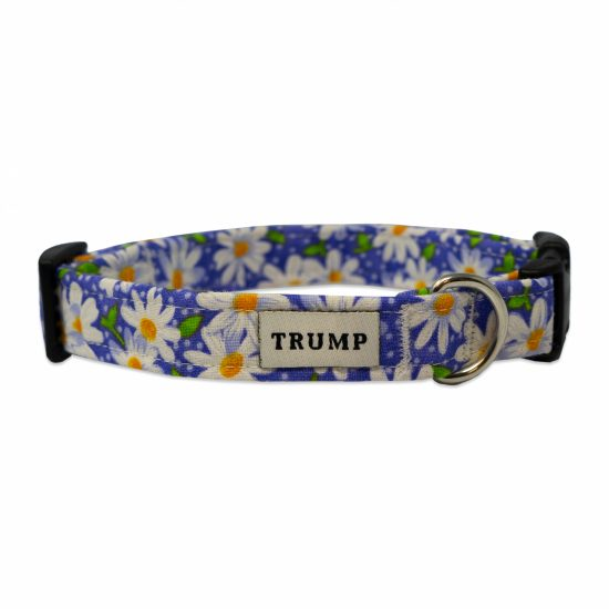 Purple Daisy Pet Collar